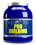 Pro Building-Natur-500g