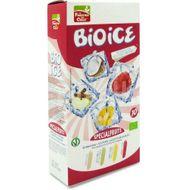Inghetata ECO fructe speciale, 10 x 40 ml
