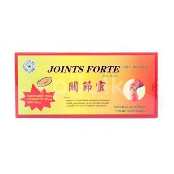 JOINTS FORTE FARA ALCOOL 10*10ML