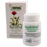 Mag Anghinar, Hofigal, 60cpr